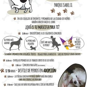 Ciudadanos se alegra por la celebración de la primera feria de adopción de animales