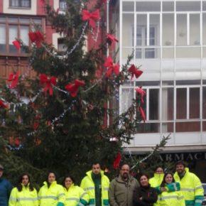 El Ayuntamiento de Cervera de Pisuerga inaugura el año con un programa mixto de formación y empleo de jardinería y viverismo